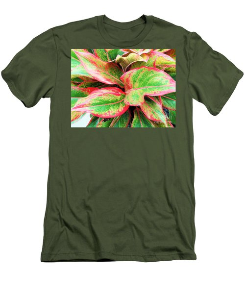 Men's T-Shirt (Slim Fit) featuring the photograph Beautiful Red Aglaonema by Ray Shrewsberry
