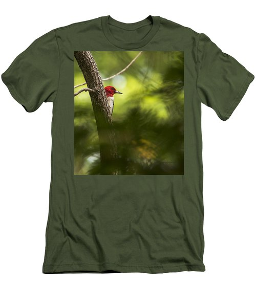 Beauty In The Woods Men's T-Shirt (Athletic Fit)