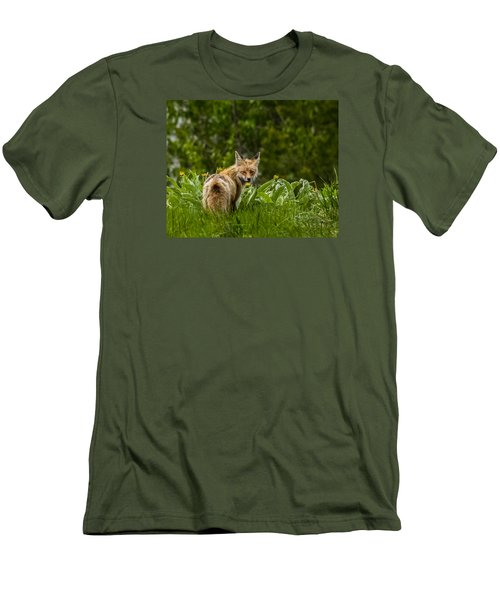Men's T-Shirt (Slim Fit) featuring the photograph Beaver Creek Mama Fox In Spring by Yeates Photography