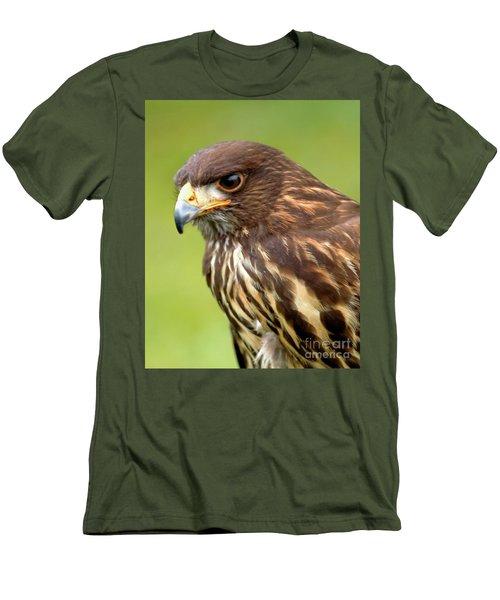 Beware The Predator Men's T-Shirt (Slim Fit) by Stephen Melia