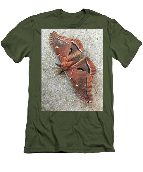 Big Beautiful Silk Moth Men's T-Shirt (Athletic Fit)