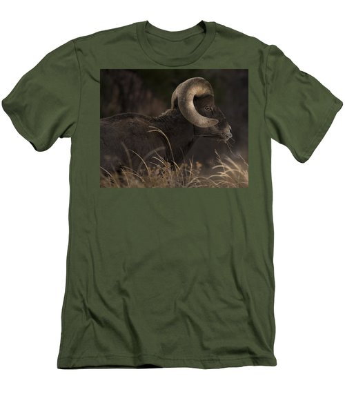 Big Horn Sheep Men's T-Shirt (Athletic Fit)
