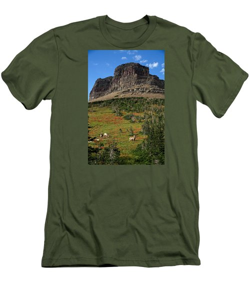 Big Horn Sheep Men's T-Shirt (Slim Fit) by Lawrence Boothby