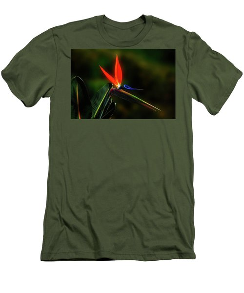 Men's T-Shirt (Slim Fit) featuring the photograph Bird Of Pardise by Joseph Hollingsworth