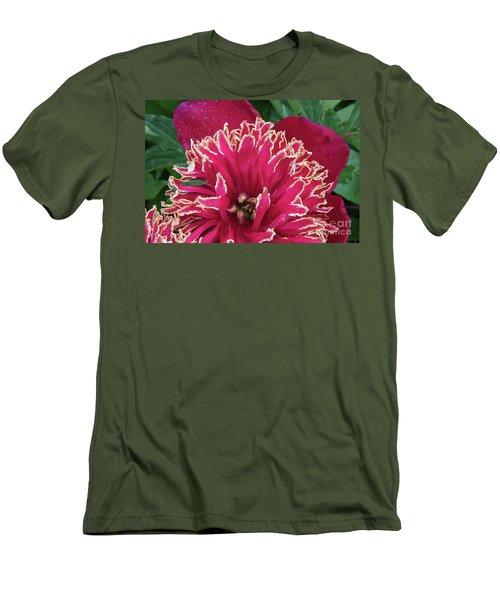 Bird's Nest Men's T-Shirt (Slim Fit) by Jim Gillen