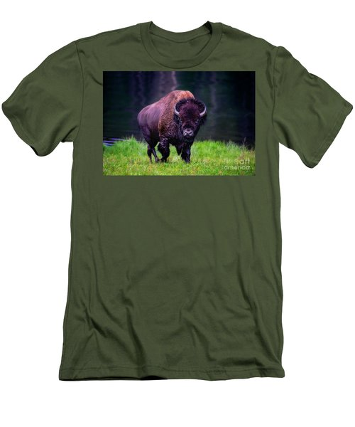 Bison Of Yellowstone Men's T-Shirt (Slim Fit) by Jim  Hatch