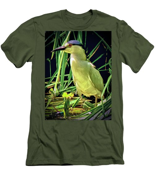 Men's T-Shirt (Slim Fit) featuring the photograph Black Crowned Night Heron by Joseph Hollingsworth
