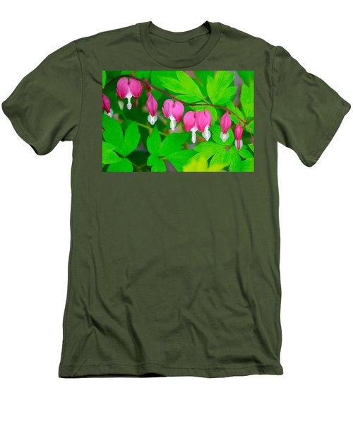 Bleeding Hearts Men's T-Shirt (Slim Fit) by Tiffany Erdman