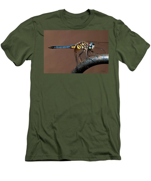 Blue And Gold Dragonfly Men's T-Shirt (Slim Fit) by Christopher Holmes