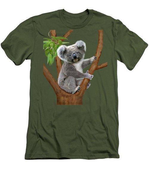 Blue-eyed Baby Koala Men's T-Shirt (Slim Fit) by Glenn Holbrook