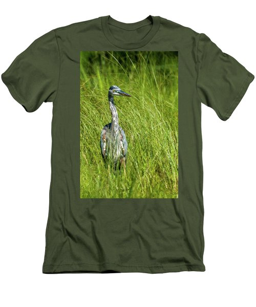 Men's T-Shirt (Slim Fit) featuring the photograph Blue Heron In A Marsh by Paul Freidlund