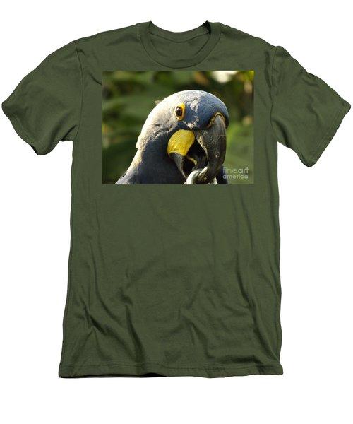 Blue Parrot Men's T-Shirt (Slim Fit) by Erick Schmidt