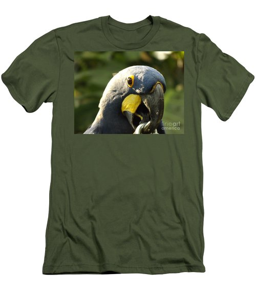 Blue Parrot Men's T-Shirt (Athletic Fit)
