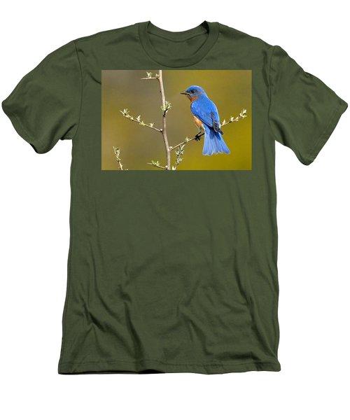Bluebird Bliss Men's T-Shirt (Athletic Fit)