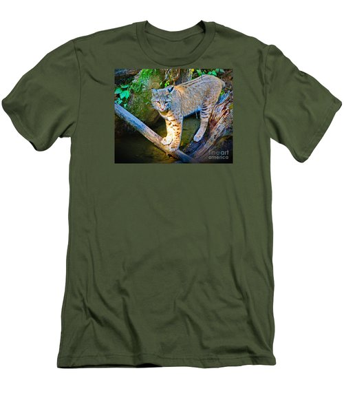 Bobcat Scanning The Water Men's T-Shirt (Athletic Fit)