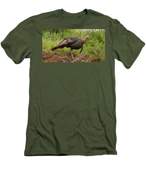 Bold Turkey Men's T-Shirt (Athletic Fit)