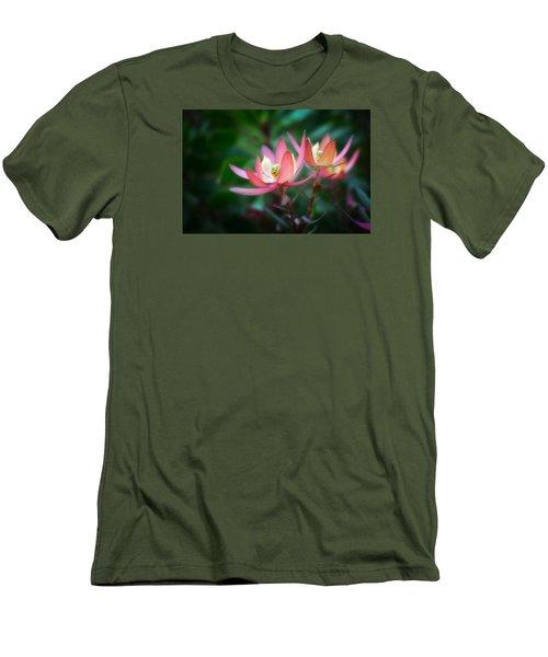 Botanic Garden Of Wales 1 Men's T-Shirt (Athletic Fit)