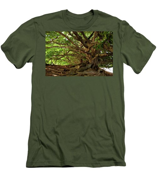 Branches And Roots Men's T-Shirt (Slim Fit) by James Eddy