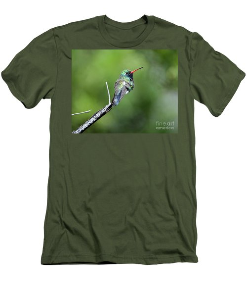 Broad-billed Hummingbird Men's T-Shirt (Athletic Fit)