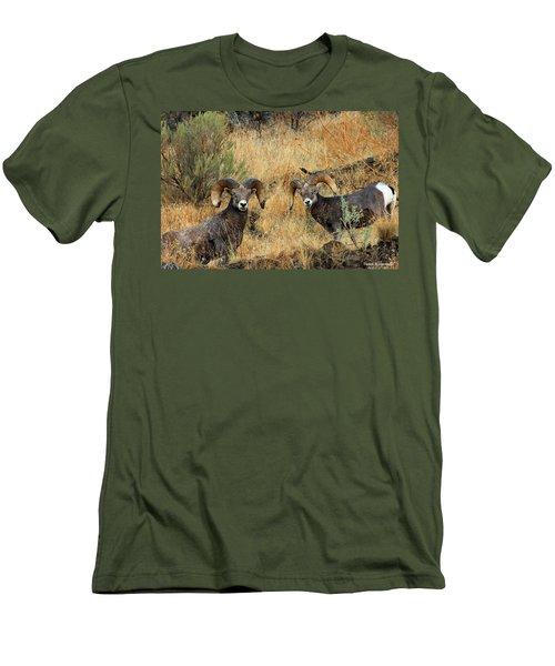 Brothers Men's T-Shirt (Slim Fit) by Steve Warnstaff