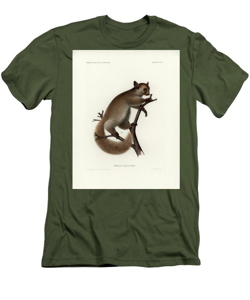 Brown Greater Galago Or Thick-tailed Bushbaby Men's T-Shirt (Slim Fit) by Hugo Troschel and J D L Franz Wagner