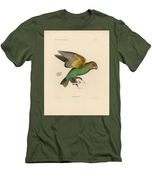 Brown-headed Parrot, Piocephalus Cryptoxanthus Men's T-Shirt (Slim Fit) by J D L Franz Wagner