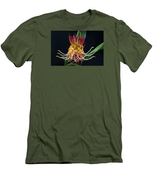 Brownea Macrophylla Tropical Flower Men's T-Shirt (Athletic Fit)