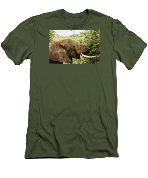 Men's T-Shirt (Slim Fit) featuring the photograph Browsing Elephant by Gary Hall