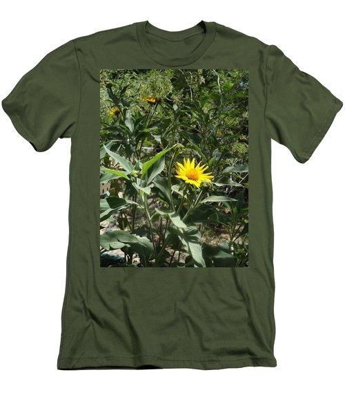 Burst Of Sun Flower Men's T-Shirt (Athletic Fit)