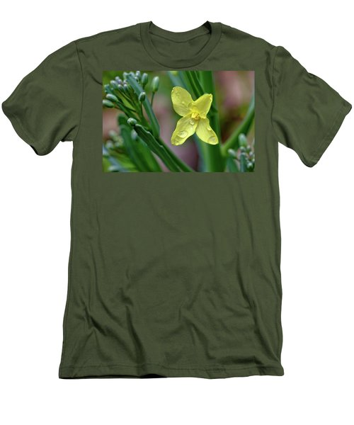 Cabbage Blossom Men's T-Shirt (Athletic Fit)