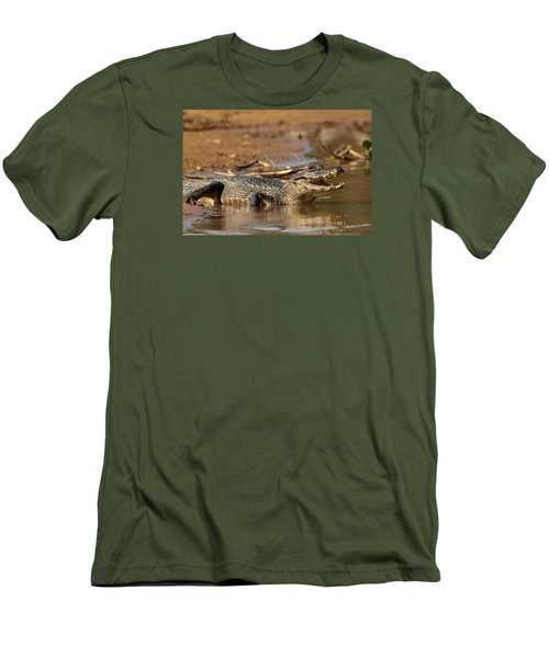 Caiman With Open Mouth Men's T-Shirt (Slim Fit) by Aivar Mikko