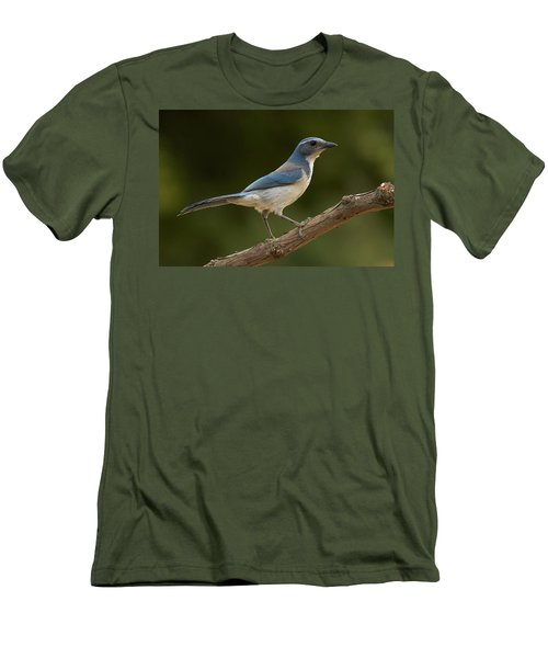 Men's T-Shirt (Slim Fit) featuring the photograph California Scrub Jay by Doug Herr