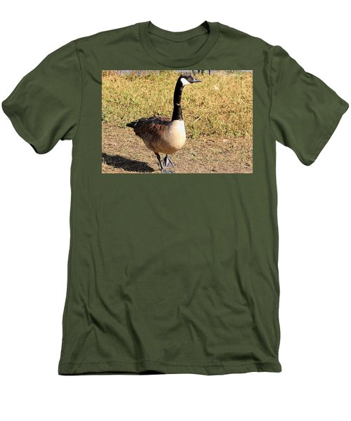 Men's T-Shirt (Slim Fit) featuring the photograph Canada Goose On A Stroll by Sheila Brown