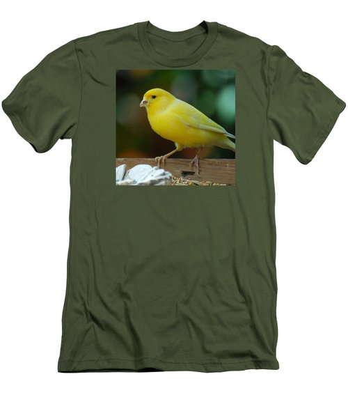 Men's T-Shirt (Slim Fit) featuring the photograph Canary Domesticated by Ramona Whiteaker