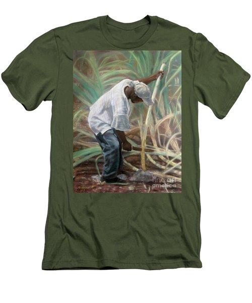 Cane Field Men's T-Shirt (Athletic Fit)