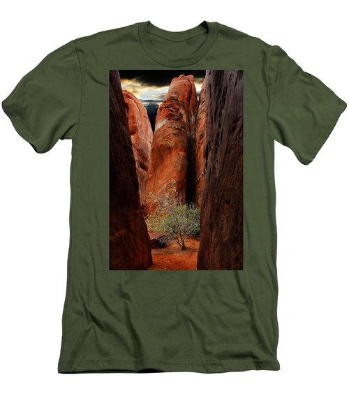 Canyon Tree Men's T-Shirt (Slim Fit) by Harry Spitz