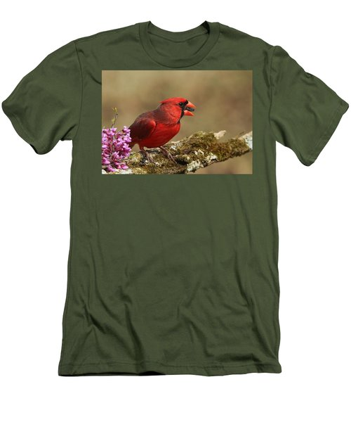 Cardinal In Spring Men's T-Shirt (Slim Fit) by Sheila Brown