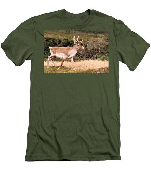 Caribou Men's T-Shirt (Athletic Fit)