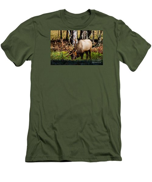 Cataloochee Elk Bull Men's T-Shirt (Athletic Fit)