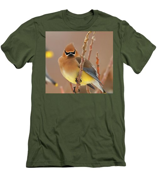 Cedar Wax Wing Men's T-Shirt (Slim Fit) by Carl Shaw