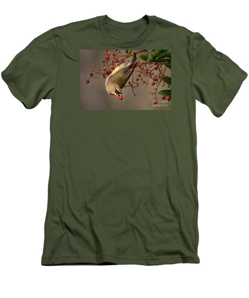 Cedar Waxwing With Toyon Berry Men's T-Shirt (Athletic Fit)