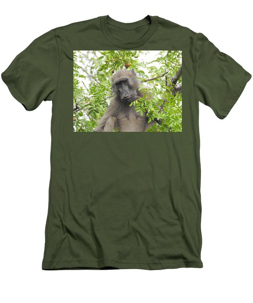 Chacma Baboon Men's T-Shirt (Slim Fit) by Betty-Anne McDonald