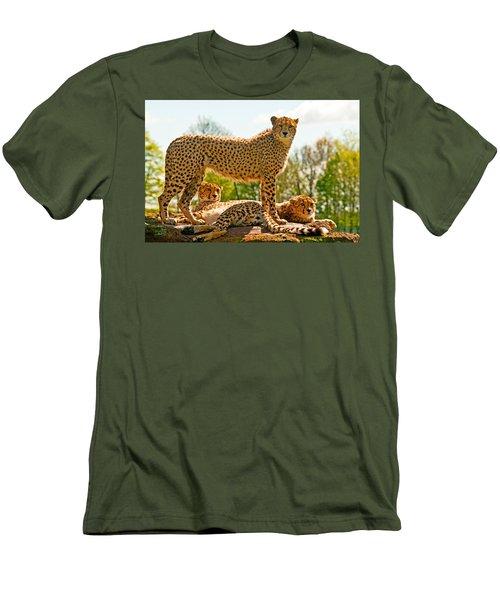 Cheetahs Three Men's T-Shirt (Athletic Fit)
