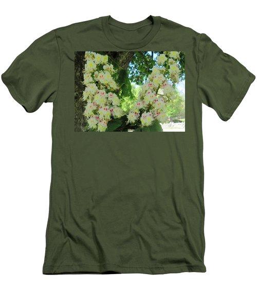 Chestnut Tree Flowers Men's T-Shirt (Slim Fit) by Paul Meinerth