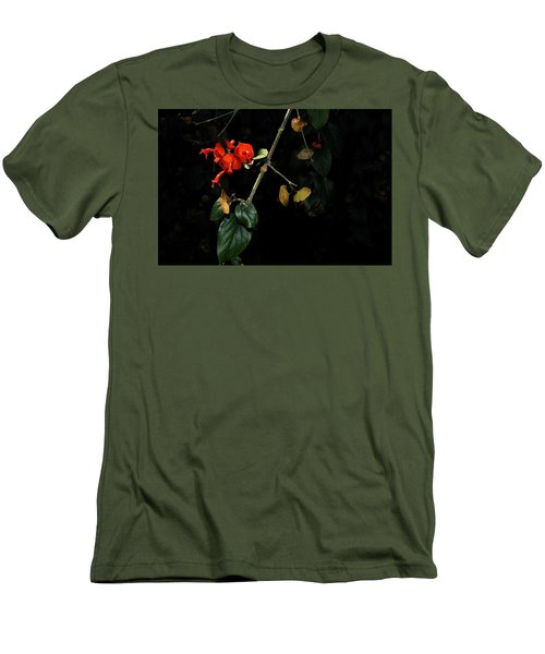 Chinese Hat Plant Men's T-Shirt (Athletic Fit)
