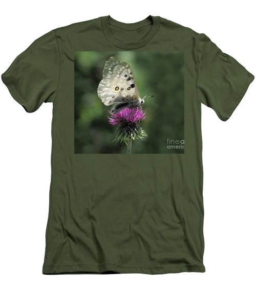 Clouded Apollo Butterfly Men's T-Shirt (Slim Fit) by Jacqi Elmslie