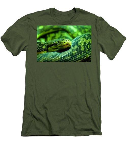 Coiled Calm Men's T-Shirt (Slim Fit)