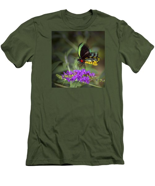 Colorful Northern Butterfly Men's T-Shirt (Slim Fit) by Penny Lisowski