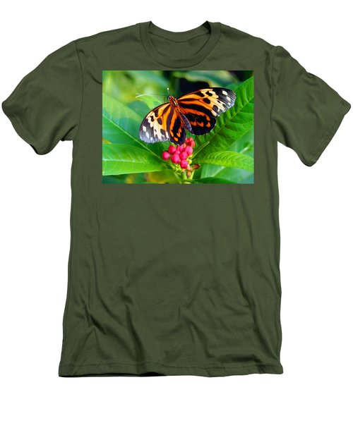 Common Tiger Glassywing Butterfly Men's T-Shirt (Athletic Fit)