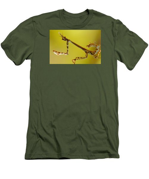 Men's T-Shirt (Slim Fit) featuring the photograph Cone Head Mantis by Richard Patmore